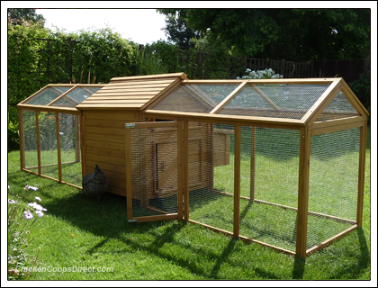 Devon Hen House With Double Run