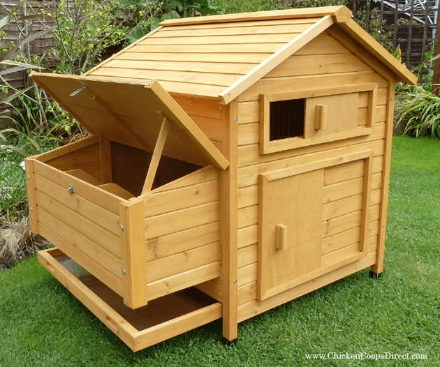 Hen House For 5 to 6 Chickens