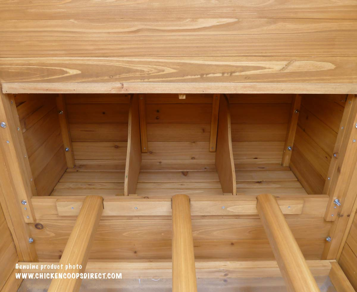 Inside the Devon coop nesting box