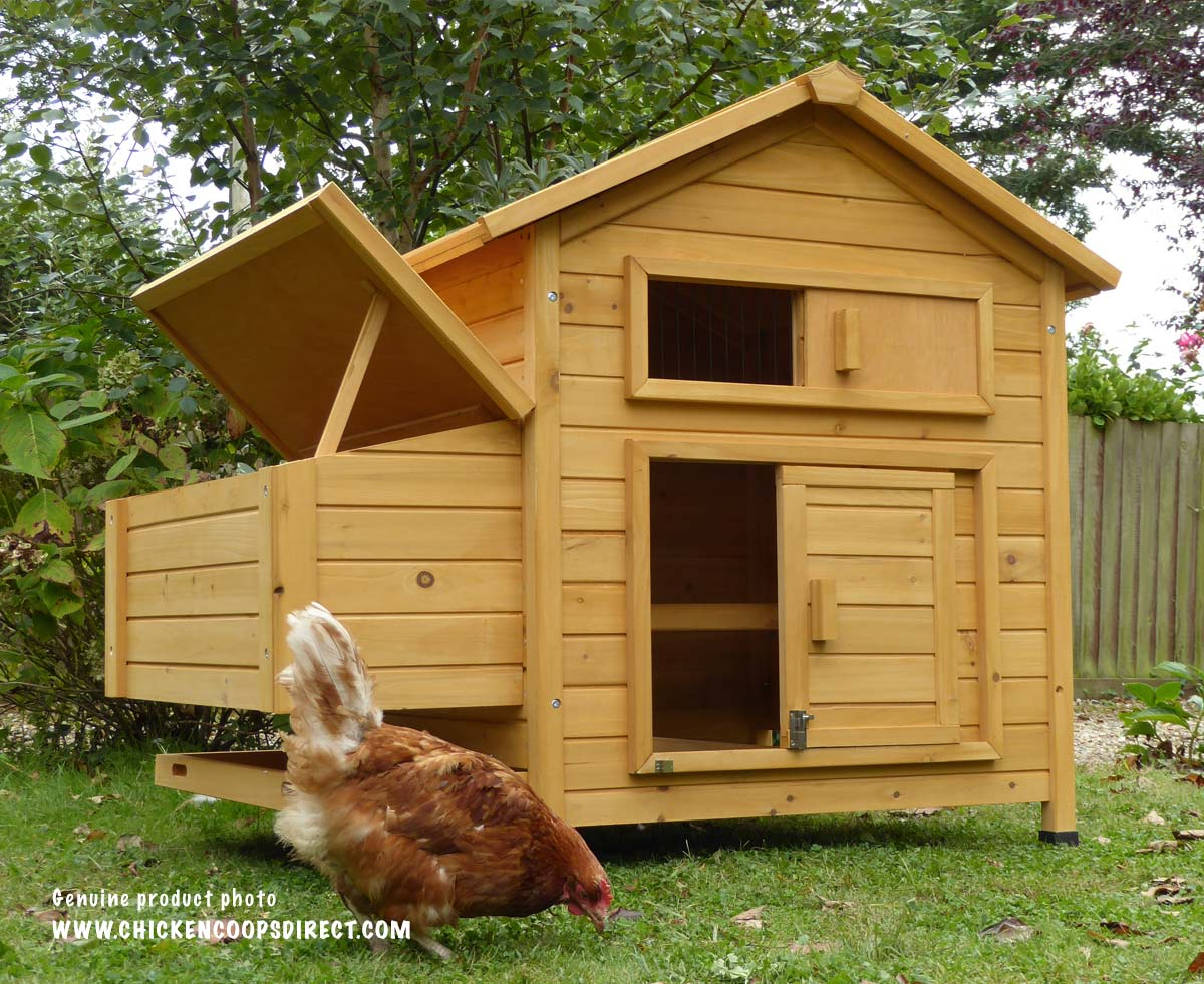 Hen house for 5-6 chickens