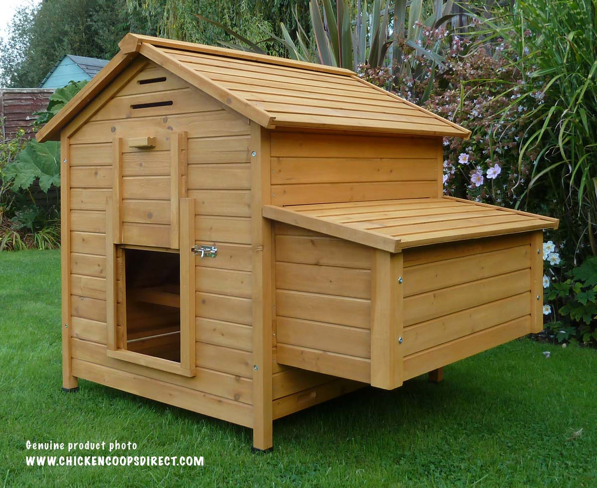 Hen House With Pop Up Door