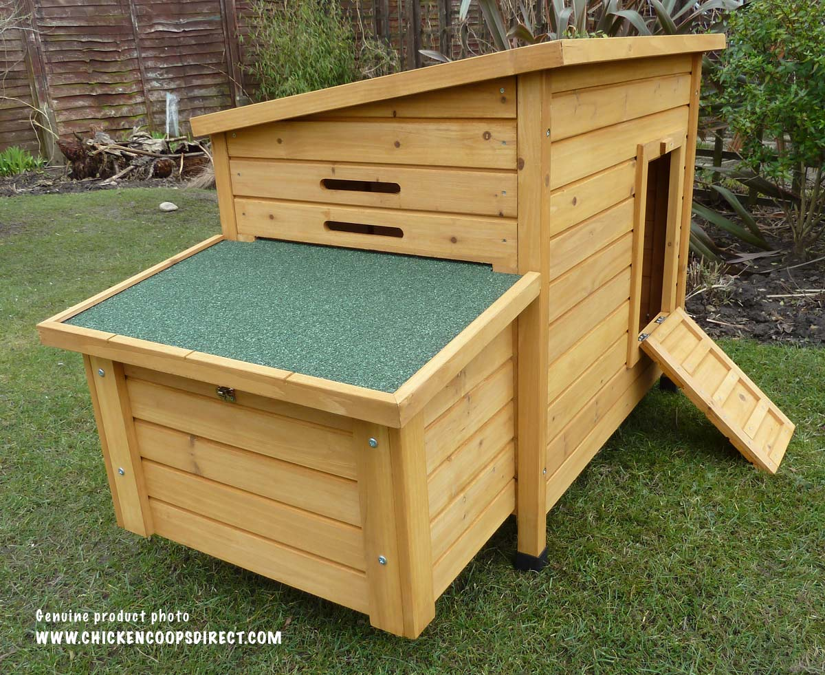Kent nesting box and ramp