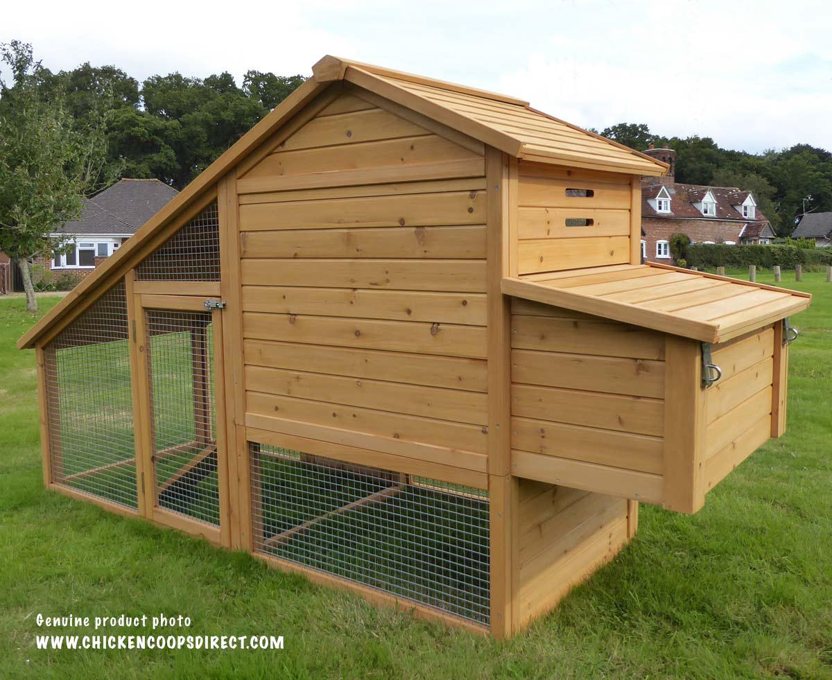 Chicken coop rear view