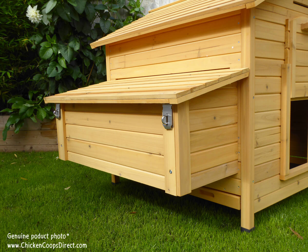 Chicken Coop With A Large Removeable Nesting Box