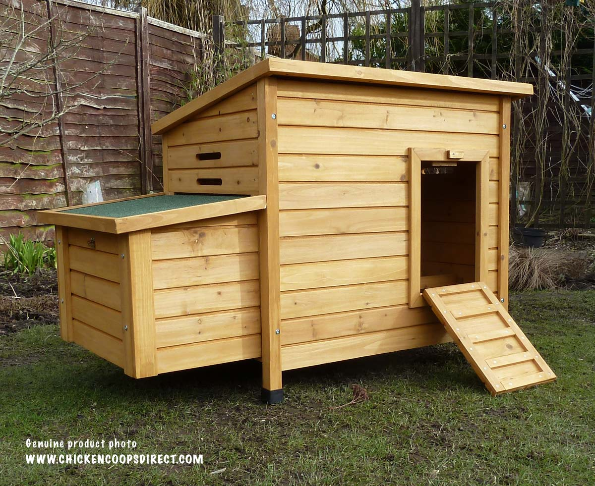 Kent chicken coop