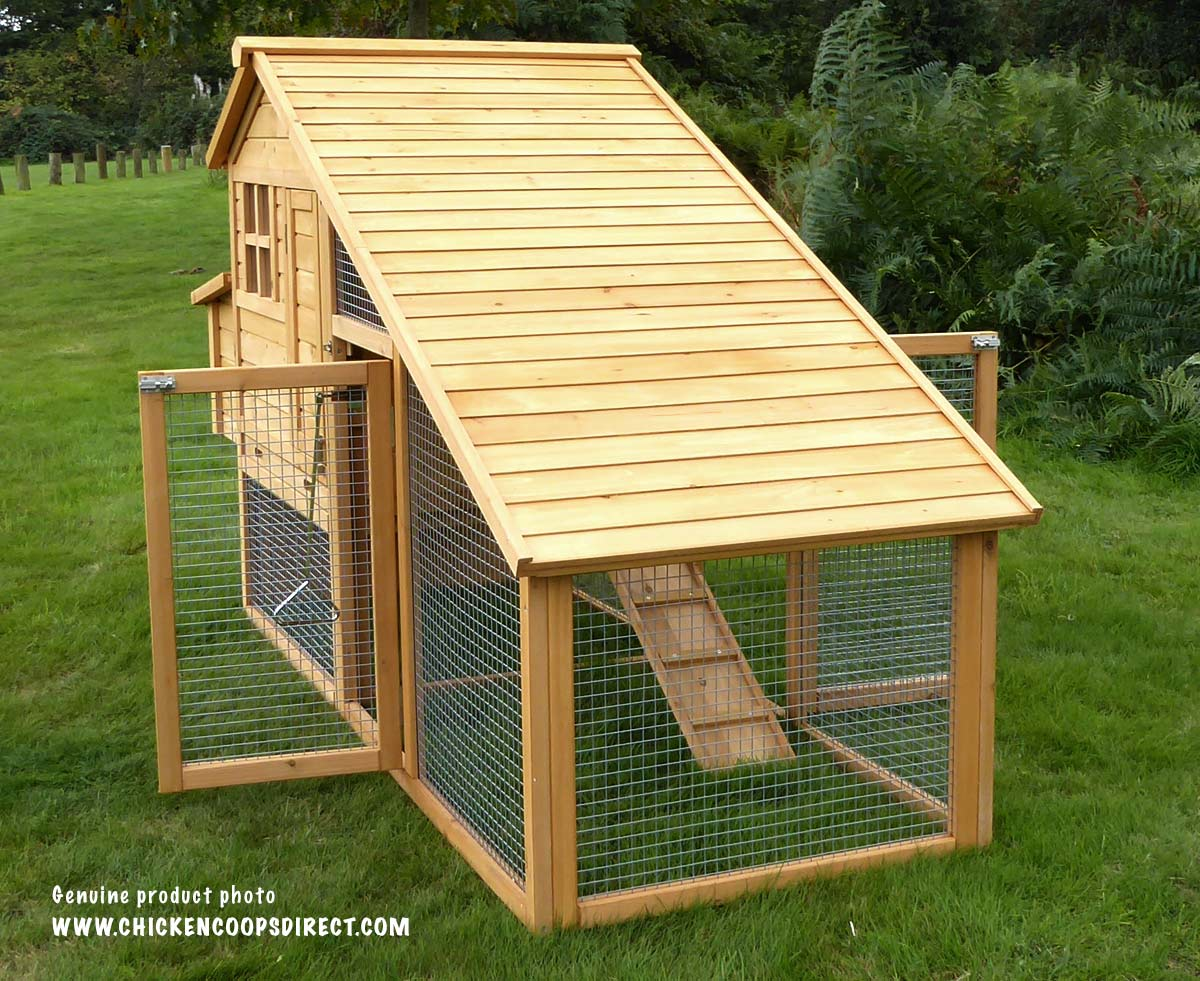 Chicken house with long sloping roof