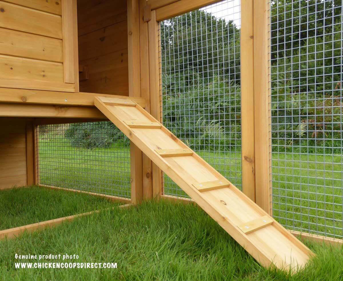 Chicken coop ramp