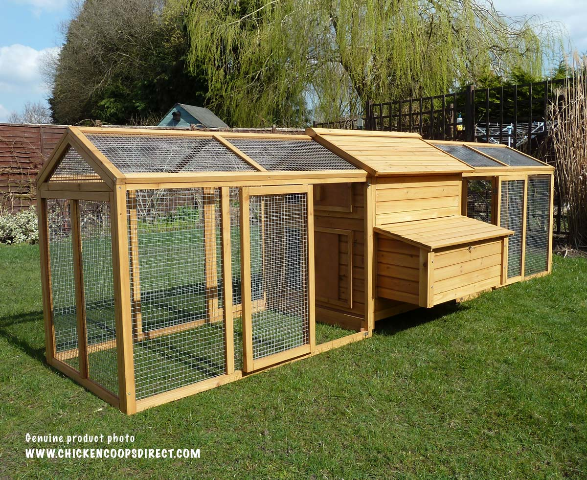 Hen house with large run for Large chicken house