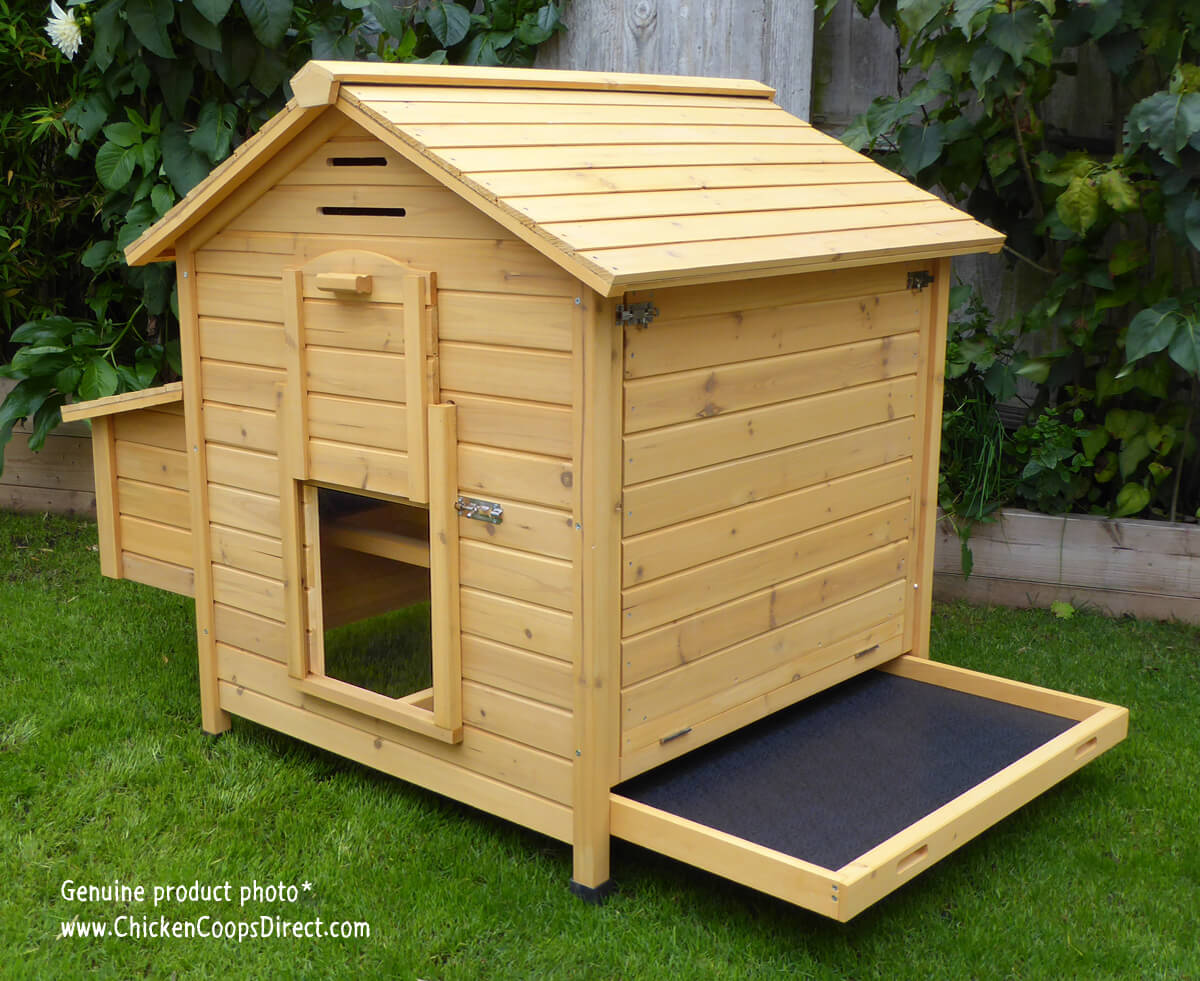 Devon hen house with tray open