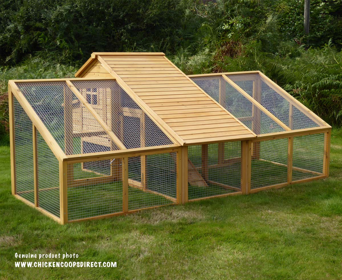 Sussex chicken coop with double run for Large chicken house