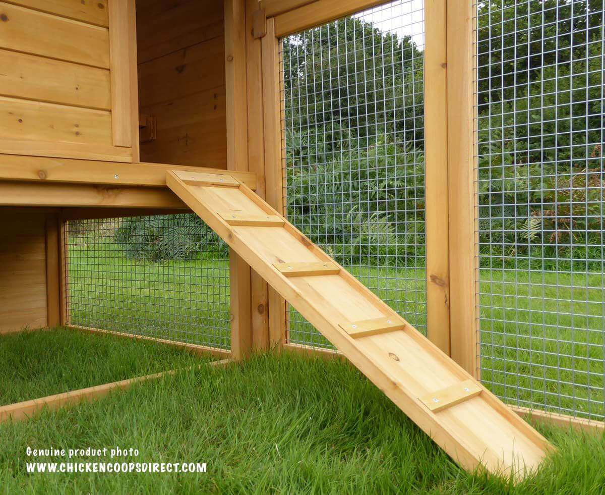 Chicken coop ramp