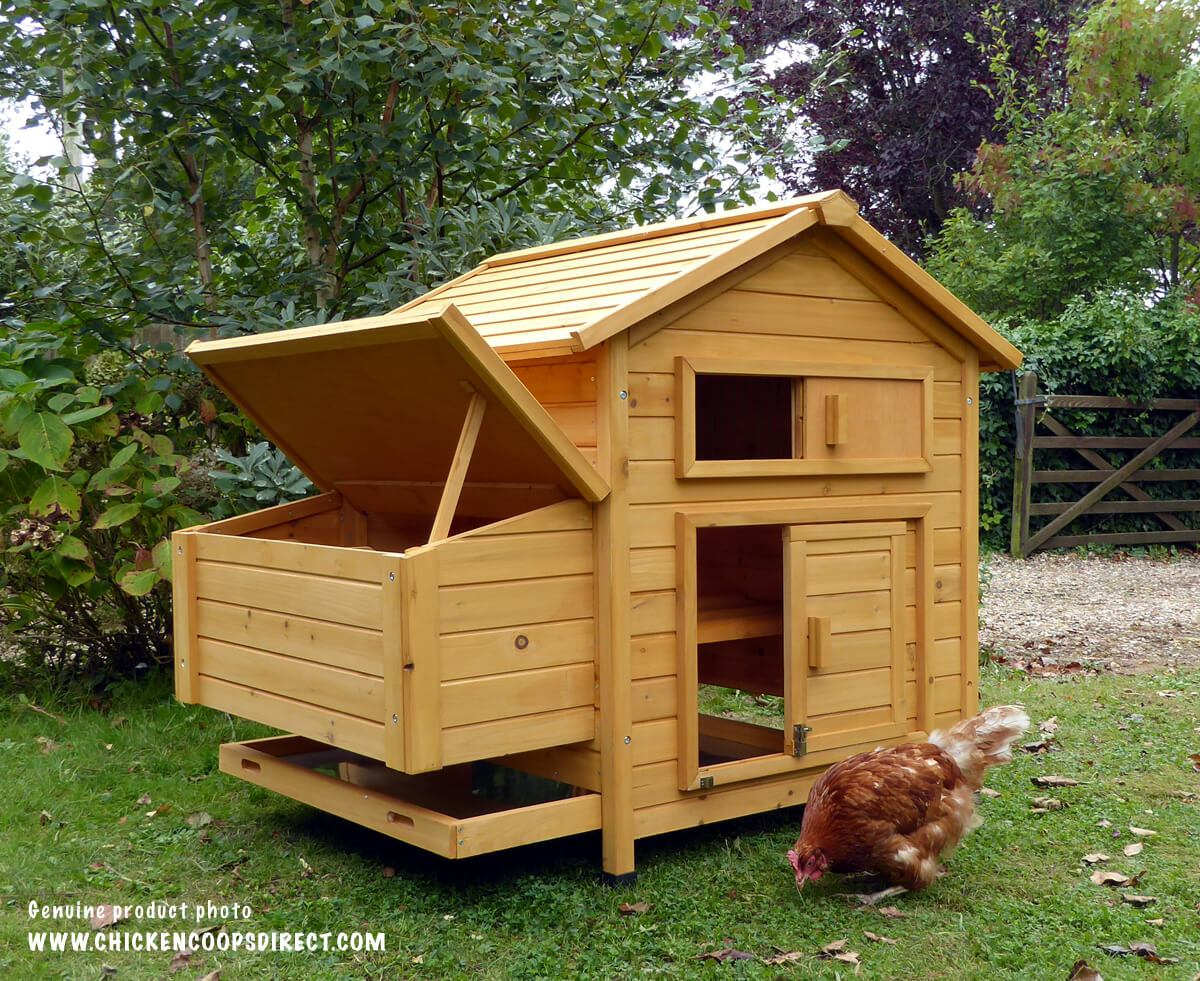 Attractive Hen House